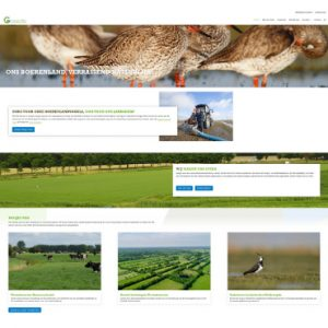 Webdesign en content Collectief Groningen West